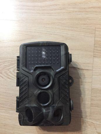 Fotopułapka-kamera leśna