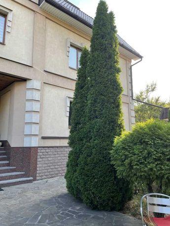 Аренда дома 1/2 часть 120м2 4к. есть двор ул Камчатская (Выборгская)