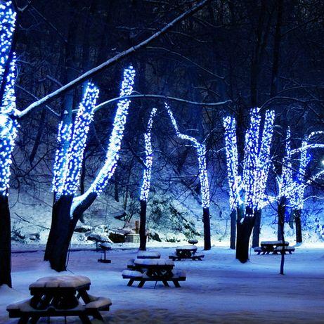 Монтаж гирлянд на деревья, елки, светодиодные ленты по Киеву области