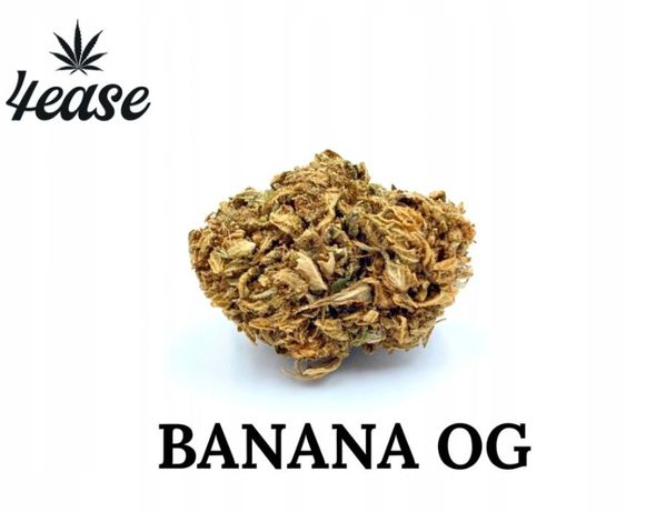 Susz CBD konopny Banana 20g 4EASE