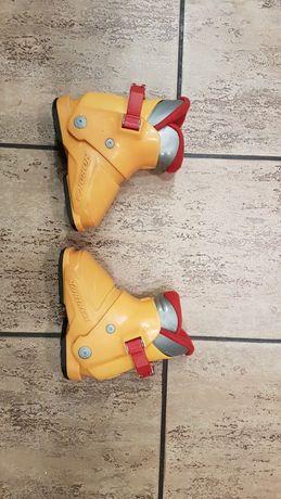 sprzedam narciarskie buty Nordica (dług skorupy 201mm)