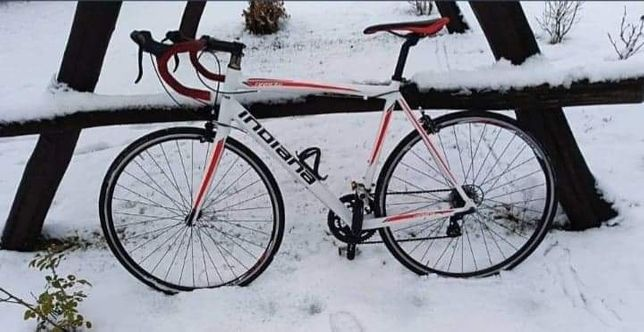 Rower kolarzowy Indiana Arrow