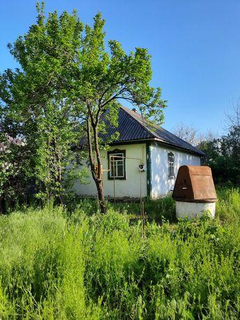Срочно! Продам будинок- дача с. Шандра Миронівський рн Київська обл.