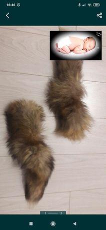 Хвостики лисички