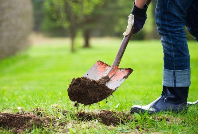 Мы занимаемся работами по уборке территорий и земляными работами