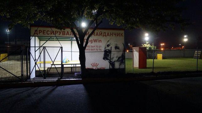 Клуб DogWin Площадка закрытая оборудованая Киев Дрессировка собак