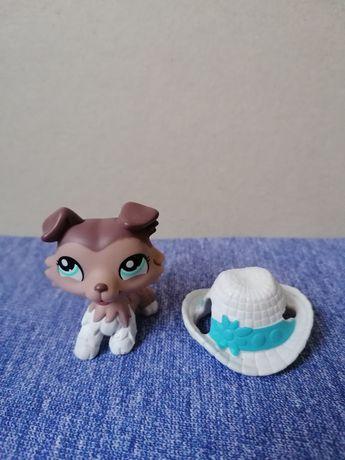 Littlest pet shop lps piesek collie z dodatkiem