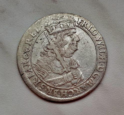 407) PRUSY KSIĄŻĘCE srebro - Ort - 1681 r.