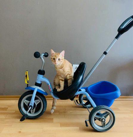 Продам 3-колесный велосипед Puky CAT 1S на 2-4 года