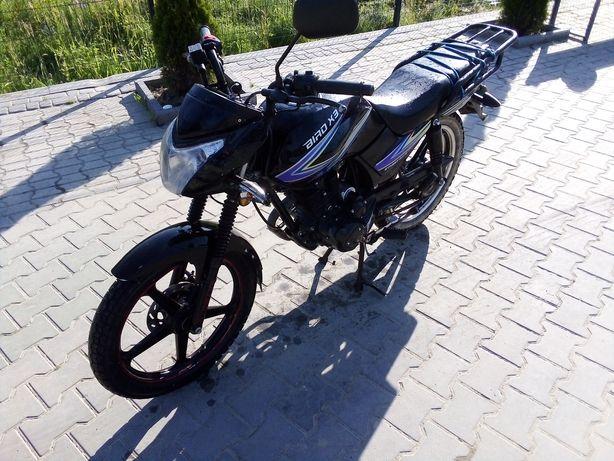 Мотоцик skimoto 150 куб ТОРГ