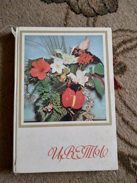 """Книга """"Цветы"""""""