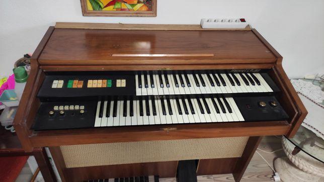Organy Elka Elektronics MINUETTE 99