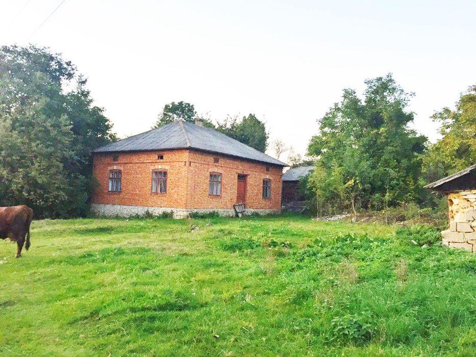 Продам будинок Тернополь - изображение 1
