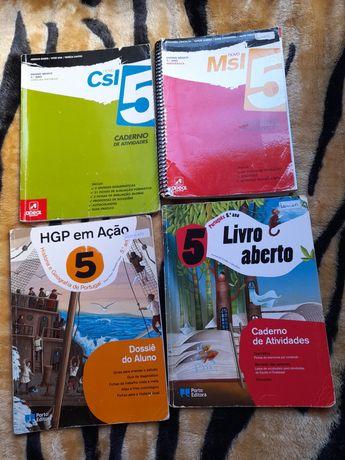 Cadernos atividades 5 ano usados