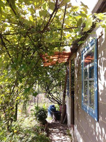Срочно продается участок с домиком в районе Янтаря