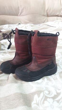 Сапоги ботинки зимние ecco  для девочки