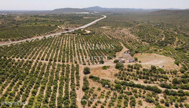 Quinta com ruínas e pomar, Tavira, Algarve
