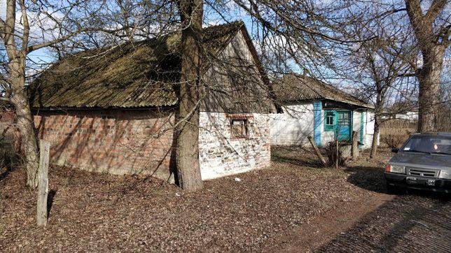 Дом с.Копти (Черниговская обл)