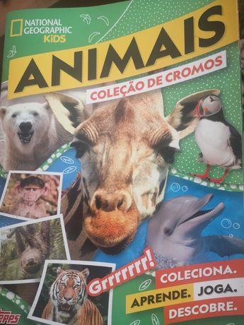 Cromos da colecção Nacional Geographic Kids Animais