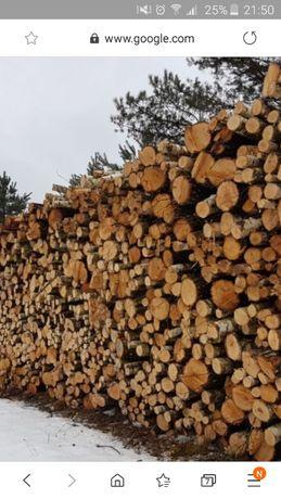 Drewno olcha brzoza sosna s2a i s2b kłoda dłużyca duże ilości
