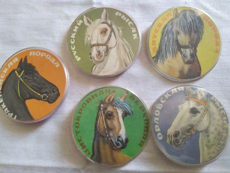 Значки кони породистые лошади