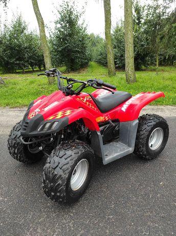 Quad ATV Dinli JP 50 Markowy