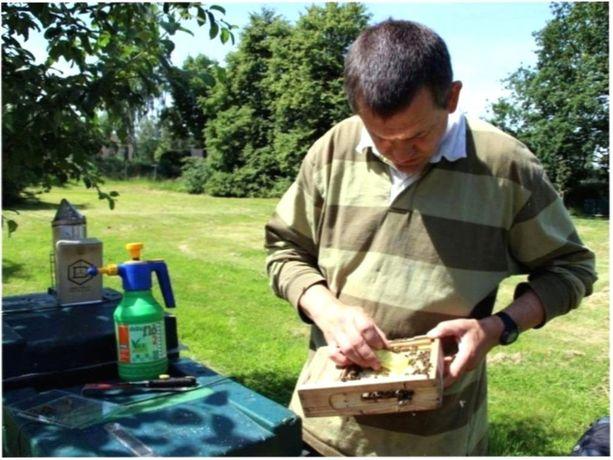 ЯКІСТЬ Бджоломатки Карника Тройзек Дешево По Украине!