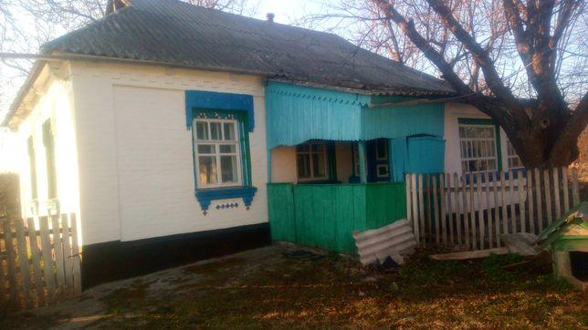 Будинок в с.Сорокотяги