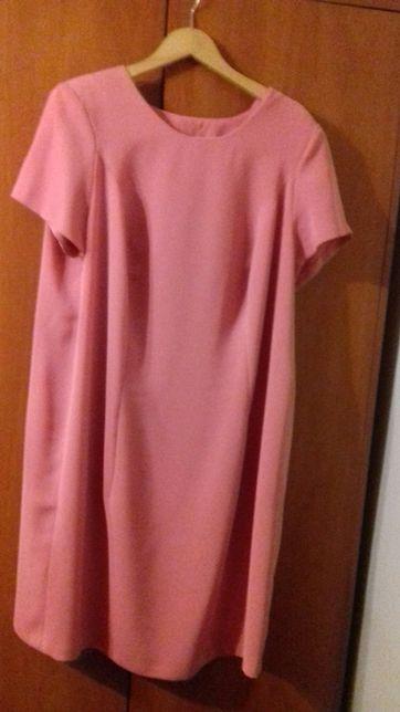 sukienka plus żakiet