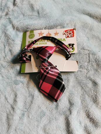 Krawaty dla psa lub kota