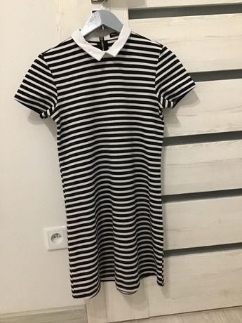 Sukienka w paski biało-czarne z kołnierzykiem przed kolano