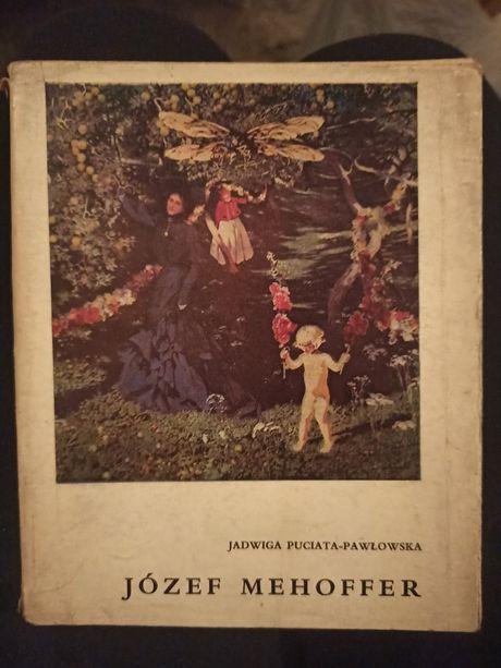 Książka Józef Mehoffer