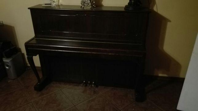 Pianio Legnica