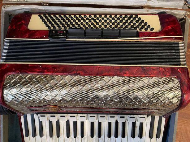 akordeon weltmeister