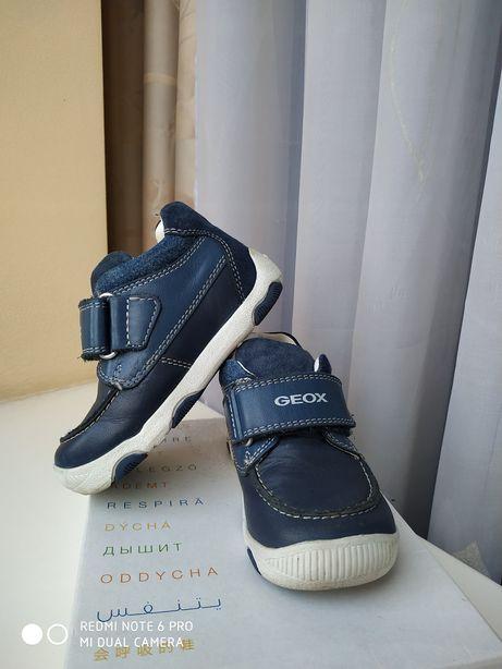 Демисезонные ботинки Geox, 22 размер
