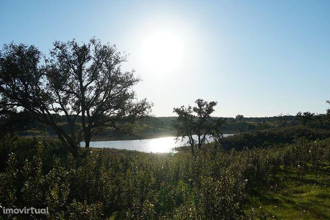 Terreno de 30 ha junto a barragem Fonte de Serne