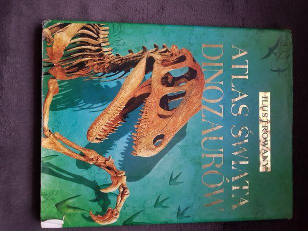 Książka o dinozaurach