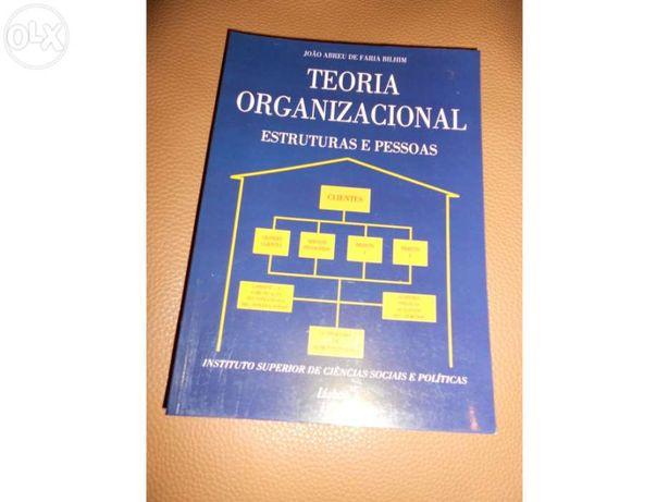 Teoria Organizacional