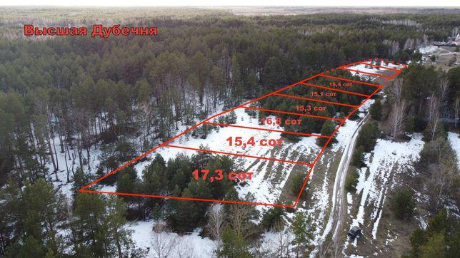 Высшая Дубечня! Участки 15-17 соток на 1-ой линии от леса! Без%
