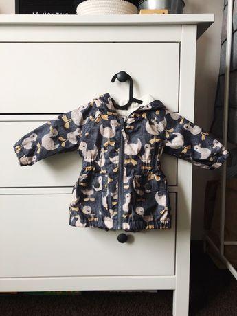 Kurtka przejściowa niemowlęca płaszczyk NEXT 62-68