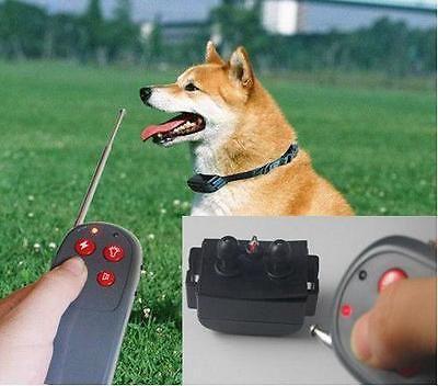 [Novo] Coleira de treino para cães Com ou Sem Choque