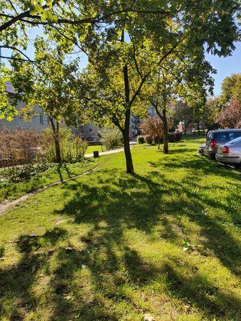 Koszenie trawy wycinka drzew karczowanie ogrody  wywóz Sosnowiec