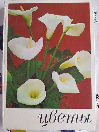Книга, Квіти, Цветоводство