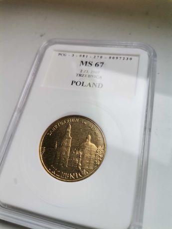 Moneta Sanktuarium św. Jadwigi Trzebnica