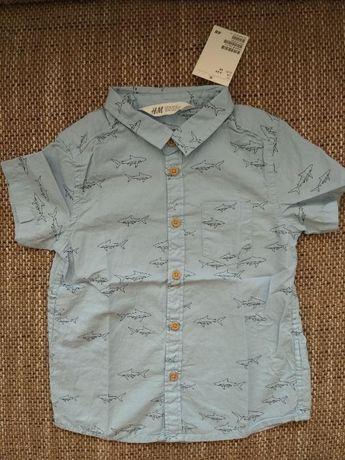 Новая рубашка H&M с акулами фирменная очень стильная