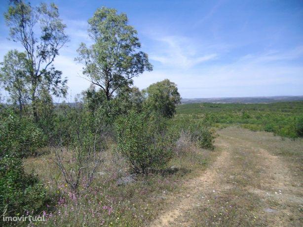 Terreno Rústico de 55 hectares na Freguesia de Alcoutim e...