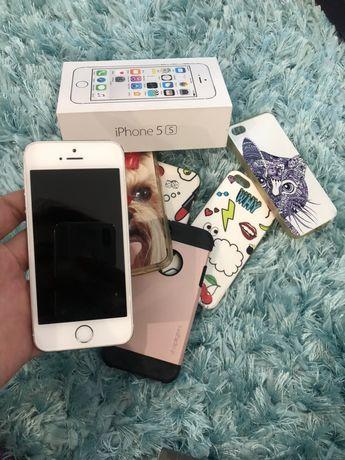 iPhone 5s srebrny 5x etui
