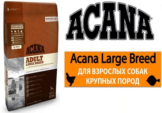 ACANA Adult Large (Акана) корм для собак крупных пород 17кг . СО СКЛАД