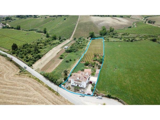 Quinta com produção de vinhos na zona de Runa/Torres Vedras