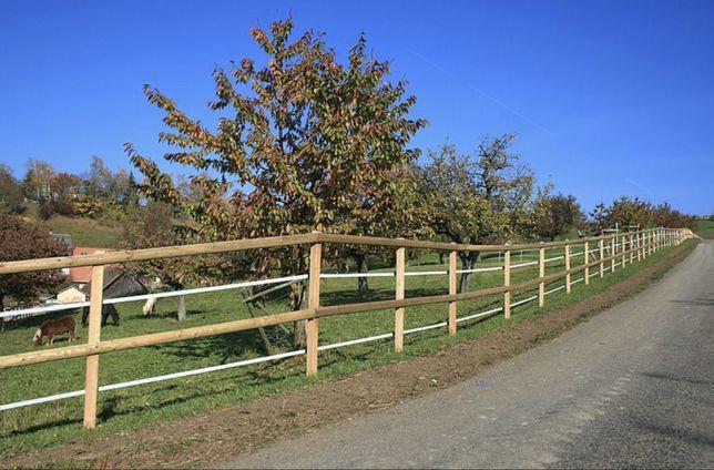 Ogrodzenie dla koni Padok